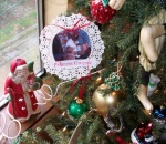 Pictures of family make a hit on Xmas Tree